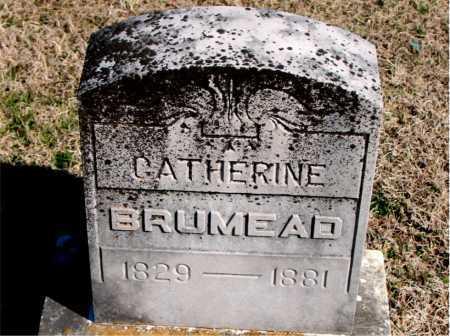 BRUMEAD, CATHERINE - Carroll County, Arkansas   CATHERINE BRUMEAD - Arkansas Gravestone Photos