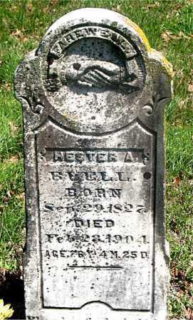 BUELL, HESTER ANN - Carroll County, Arkansas | HESTER ANN BUELL - Arkansas Gravestone Photos