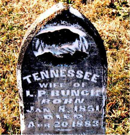 BUNCH, TENNESSEE - Carroll County, Arkansas | TENNESSEE BUNCH - Arkansas Gravestone Photos