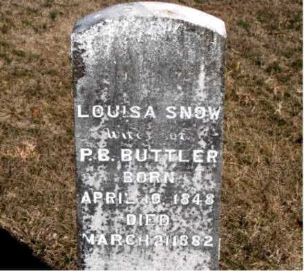 SNOW BUTLER, LOUISA - Carroll County, Arkansas | LOUISA SNOW BUTLER - Arkansas Gravestone Photos