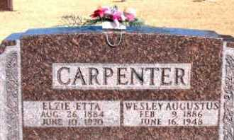 CARPENTER, ELZIE ETTA - Carroll County, Arkansas | ELZIE ETTA CARPENTER - Arkansas Gravestone Photos