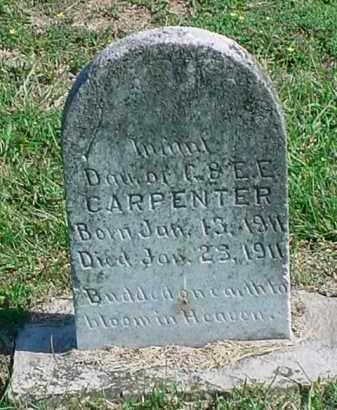 CARPENTER, INFANT DAUGHTER - Carroll County, Arkansas | INFANT DAUGHTER CARPENTER - Arkansas Gravestone Photos