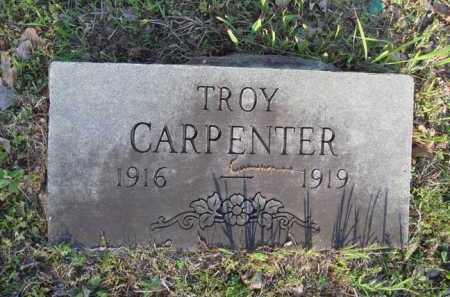 CARPENTER, TROY - Carroll County, Arkansas | TROY CARPENTER - Arkansas Gravestone Photos