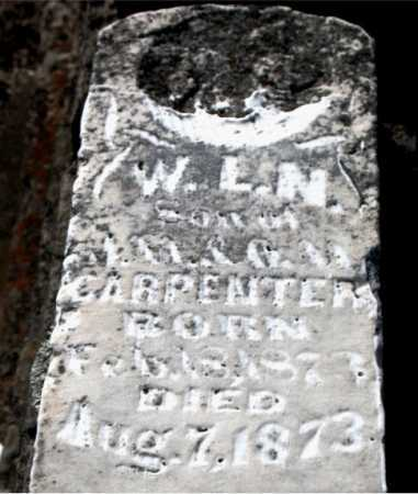 CARPENTER, W  L N - Carroll County, Arkansas | W  L N CARPENTER - Arkansas Gravestone Photos
