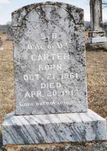 HAMMONS OR HAMMOND CARTER, SAPHRONIA BELLE - Carroll County, Arkansas | SAPHRONIA BELLE HAMMONS OR HAMMOND CARTER - Arkansas Gravestone Photos