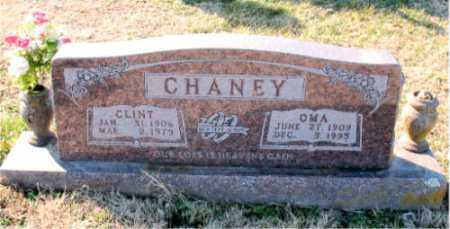 CHANEY, OMA - Carroll County, Arkansas | OMA CHANEY - Arkansas Gravestone Photos