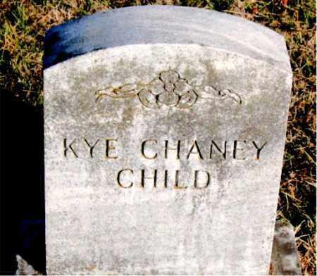 CHANEY, KYE - Carroll County, Arkansas | KYE CHANEY - Arkansas Gravestone Photos
