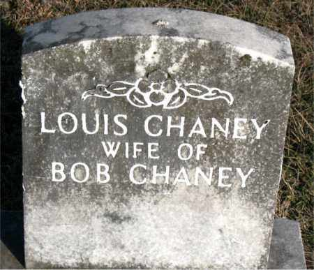 CHANEY, LOUIS - Carroll County, Arkansas | LOUIS CHANEY - Arkansas Gravestone Photos