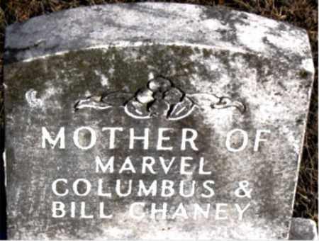 CHANEY, MOTHER - Carroll County, Arkansas | MOTHER CHANEY - Arkansas Gravestone Photos