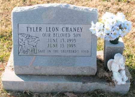 CHANEY, TYLER  LEON - Carroll County, Arkansas   TYLER  LEON CHANEY - Arkansas Gravestone Photos