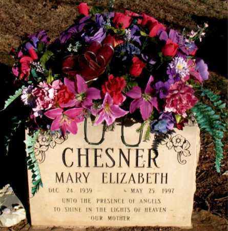CHESNER, MARY ELIZABETH - Carroll County, Arkansas | MARY ELIZABETH CHESNER - Arkansas Gravestone Photos