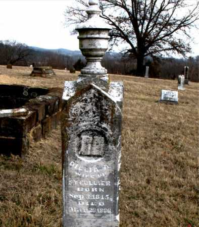 BLANKENSHIP COLLIER, DILLIA ANN - Carroll County, Arkansas | DILLIA ANN BLANKENSHIP COLLIER - Arkansas Gravestone Photos