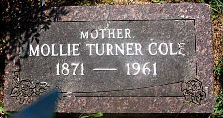 TURNER COLE, MOLLIE - Carroll County, Arkansas | MOLLIE TURNER COLE - Arkansas Gravestone Photos