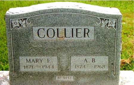 COLLIER, MARY E - Carroll County, Arkansas | MARY E COLLIER - Arkansas Gravestone Photos