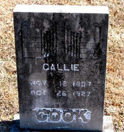 COOK, CALLIE - Carroll County, Arkansas | CALLIE COOK - Arkansas Gravestone Photos