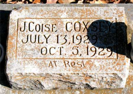 COXSEY, J. COLSE - Carroll County, Arkansas | J. COLSE COXSEY - Arkansas Gravestone Photos