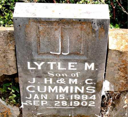 CUMMINS, LYTLE M - Carroll County, Arkansas | LYTLE M CUMMINS - Arkansas Gravestone Photos