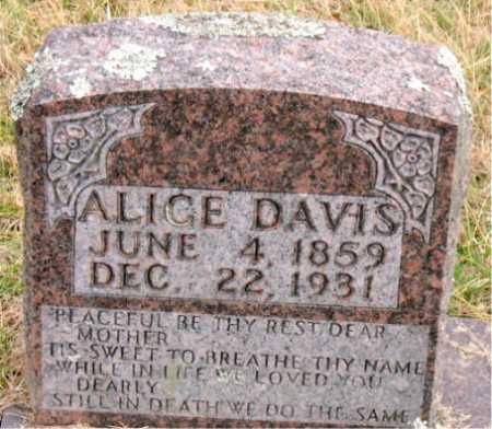 DAVIS, ALICE - Carroll County, Arkansas | ALICE DAVIS - Arkansas Gravestone Photos