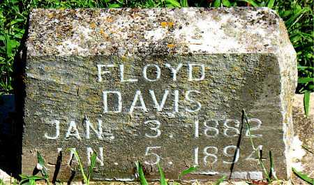 DAVIS, FLOYD - Carroll County, Arkansas | FLOYD DAVIS - Arkansas Gravestone Photos