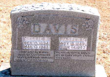 DAVIS, NELLIE B. - Carroll County, Arkansas | NELLIE B. DAVIS - Arkansas Gravestone Photos