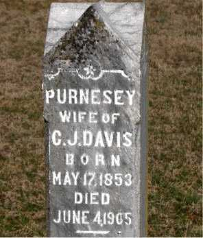 DAVIS, PURNESEY - Carroll County, Arkansas | PURNESEY DAVIS - Arkansas Gravestone Photos
