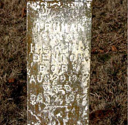 DENTON, TRUMAN - Carroll County, Arkansas | TRUMAN DENTON - Arkansas Gravestone Photos