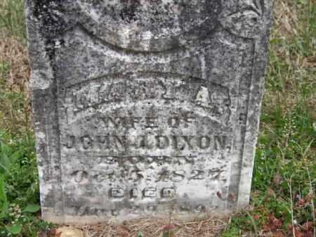 DIXON, MARY ANN - Carroll County, Arkansas | MARY ANN DIXON - Arkansas Gravestone Photos