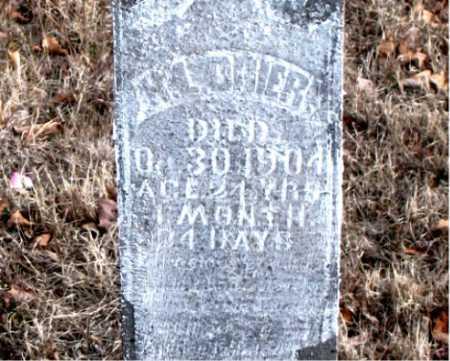 DRIER, H.L. - Carroll County, Arkansas | H.L. DRIER - Arkansas Gravestone Photos