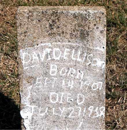 ELLISON, DAVID - Carroll County, Arkansas   DAVID ELLISON - Arkansas Gravestone Photos