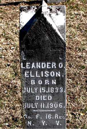 ELLISON, LEANDER O - Carroll County, Arkansas | LEANDER O ELLISON - Arkansas Gravestone Photos