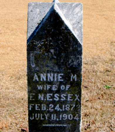 ESSEX, ANNIE M. - Carroll County, Arkansas | ANNIE M. ESSEX - Arkansas Gravestone Photos