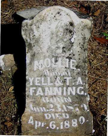 FANNING, MOLLIE - Carroll County, Arkansas | MOLLIE FANNING - Arkansas Gravestone Photos