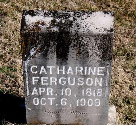 FERGUSON, CATHARINE - Carroll County, Arkansas | CATHARINE FERGUSON - Arkansas Gravestone Photos
