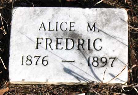 FREDRIC, ALICE M. - Carroll County, Arkansas   ALICE M. FREDRIC - Arkansas Gravestone Photos