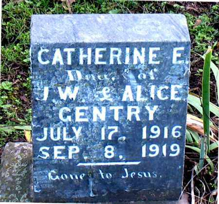 GENTRY, CATHERINE E - Carroll County, Arkansas | CATHERINE E GENTRY - Arkansas Gravestone Photos