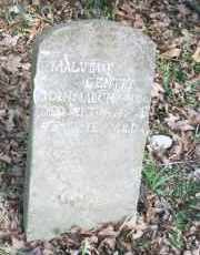 WHITE GENTRY, MALVINA F - Carroll County, Arkansas | MALVINA F WHITE GENTRY - Arkansas Gravestone Photos