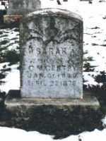 MCELYEA GENTRY, SARAH J. - Carroll County, Arkansas   SARAH J. MCELYEA GENTRY - Arkansas Gravestone Photos