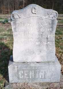 FANNING GENTRY, LIDA - Carroll County, Arkansas | LIDA FANNING GENTRY - Arkansas Gravestone Photos