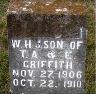 GRIFFITH, W. H. J. - Carroll County, Arkansas | W. H. J. GRIFFITH - Arkansas Gravestone Photos