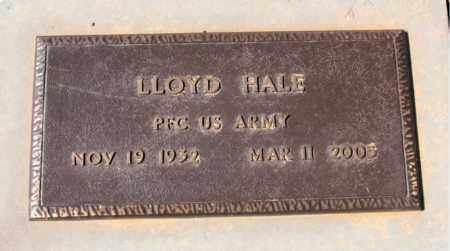 HALE  (VETERAN), LLOYD - Carroll County, Arkansas | LLOYD HALE  (VETERAN) - Arkansas Gravestone Photos
