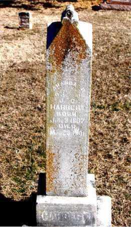 HARBERT, AMANDA R - Carroll County, Arkansas | AMANDA R HARBERT - Arkansas Gravestone Photos