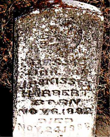 HARBERT, BESSIE - Carroll County, Arkansas | BESSIE HARBERT - Arkansas Gravestone Photos