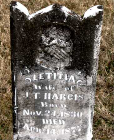 HARGIS, LETITIA - Carroll County, Arkansas | LETITIA HARGIS - Arkansas Gravestone Photos