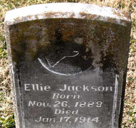 JACKSON, ELLIE - Carroll County, Arkansas | ELLIE JACKSON - Arkansas Gravestone Photos