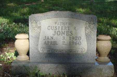 JONES, CUSPERT R. - Carroll County, Arkansas | CUSPERT R. JONES - Arkansas Gravestone Photos