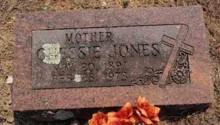JONES, CHESSIE - Carroll County, Arkansas | CHESSIE JONES - Arkansas Gravestone Photos