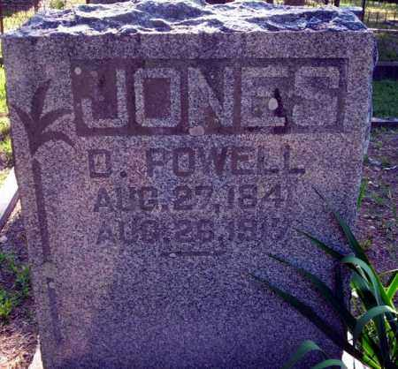 JONES, D. POWELL - Carroll County, Arkansas | D. POWELL JONES - Arkansas Gravestone Photos