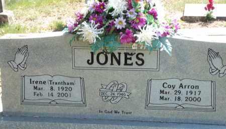 JONES, IRENE - Carroll County, Arkansas | IRENE JONES - Arkansas Gravestone Photos