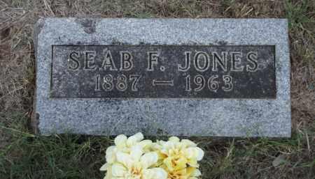 JONES, SEAB F - Carroll County, Arkansas | SEAB F JONES - Arkansas Gravestone Photos