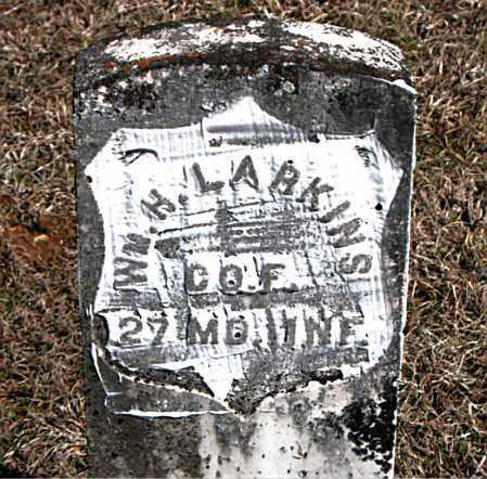 LARKINS  (VETERAN UNION), WILLIAM  H - Carroll County, Arkansas | WILLIAM  H LARKINS  (VETERAN UNION) - Arkansas Gravestone Photos